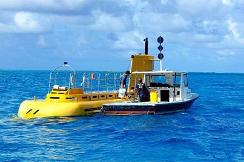 美人鱼号观光潜水艇的图片