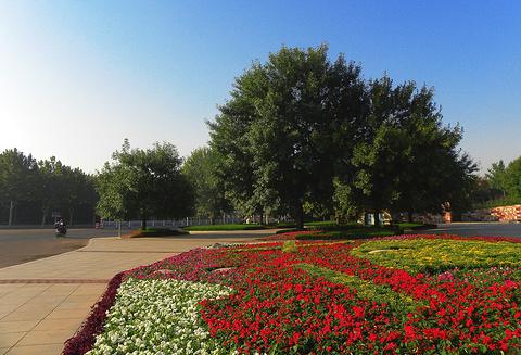 城阳世纪公园