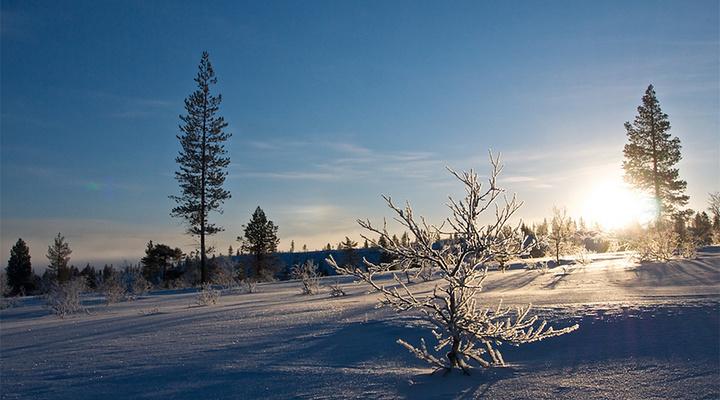 冬日雪景旅游图片