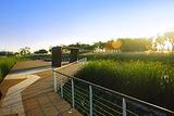 世博后滩湿地公园