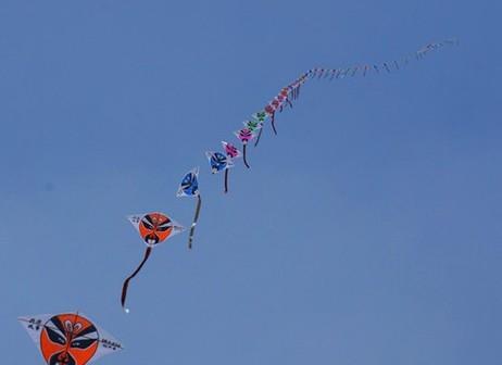华盛顿州国际风筝节