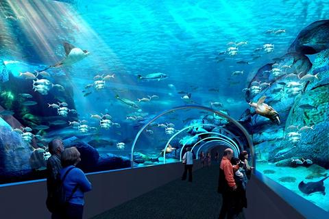 两洋水族馆