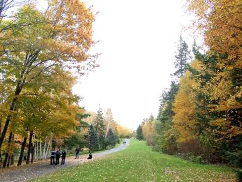 奥德尔公园旅游景点图片