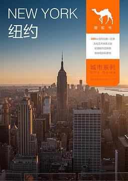 纽约骆驼书