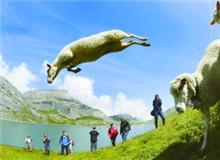 盖米牧羊人节