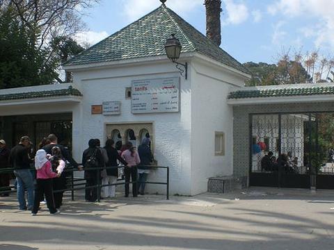 突尼斯动物园旅游景点图片
