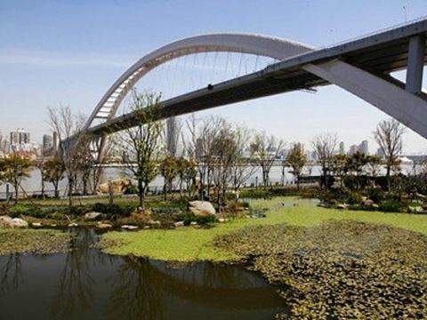 世博公园旅游景点图片