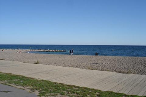 沙滩区的图片