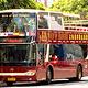 Big Bus上海观光巴士