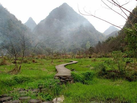 翠谷湿地旅游景点图片