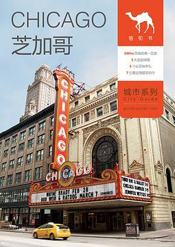 芝加哥骆驼书