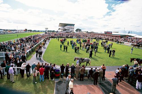 高威赛马节(Galway Races)