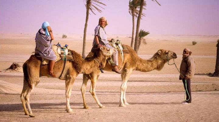 撒哈拉大沙漠旅游图片