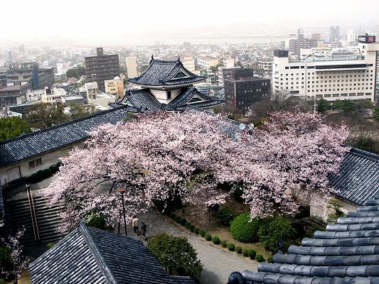 和歌山市旅游景点图片