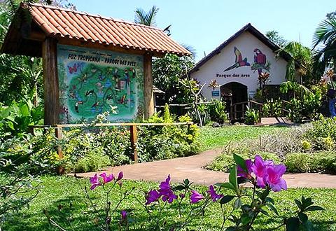 伊瓜苏市旅游景点图片