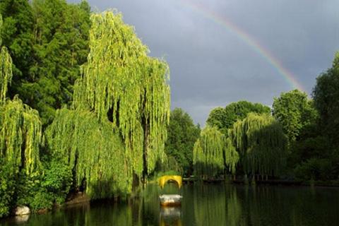 路易森公园