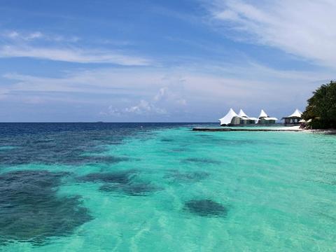 Artificial海滩旅游景点图片