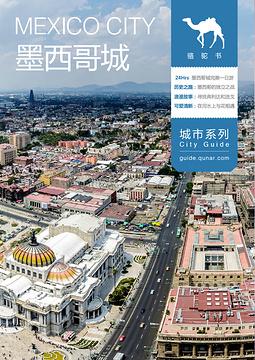 墨西哥城骆驼书