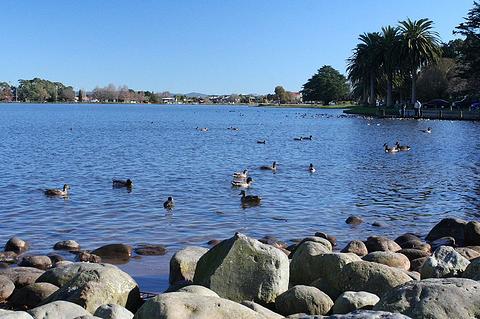 汉米尔顿湖