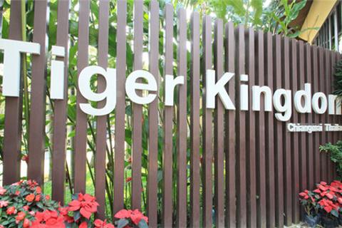 老虎园的图片