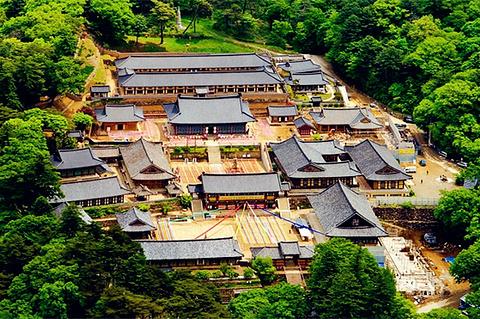 陕川郡旅游图片