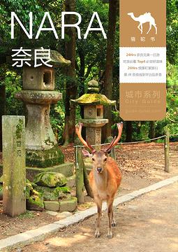 奈良骆驼书