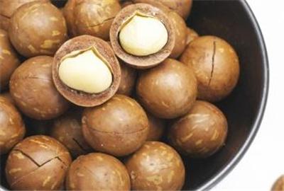 澳洲坚果 Macadamia
