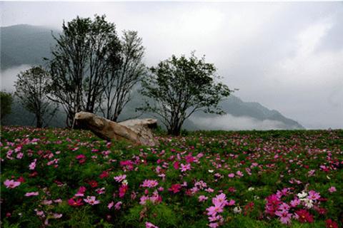 红池坝草原