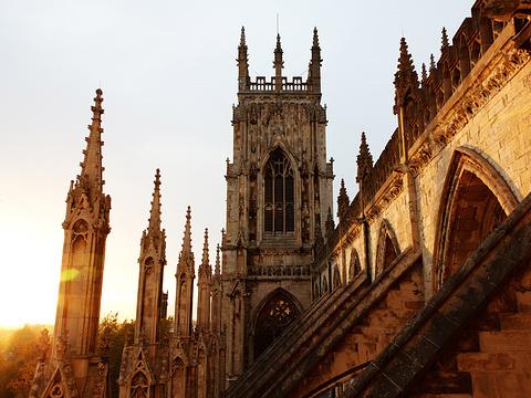 约克大教堂旅游景点图片