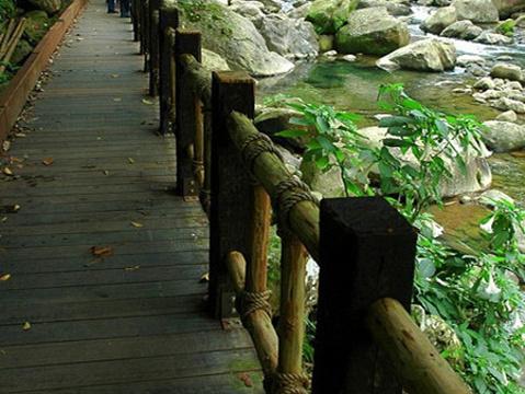 蓬莱溪护鱼步道