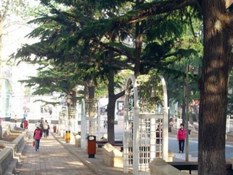 贮水山儿童公园旅游景点图片