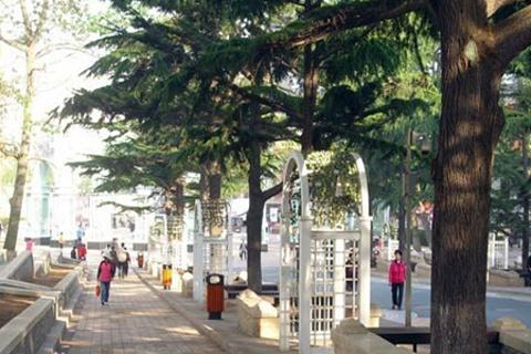 贮水山儿童公园的图片