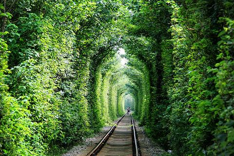 江宁爱情隧道的图片