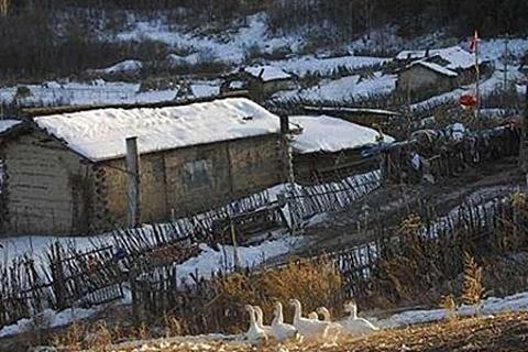 锦江木屋村