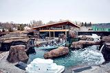埃德蒙顿河谷动物园