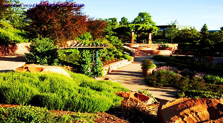 红丘公园旅游图片