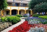 梵高疗养院