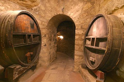 葡萄酒博物馆的图片