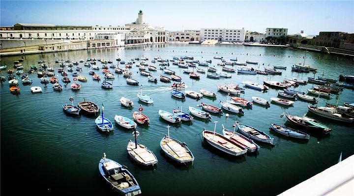阿尔及尔港旅游图片