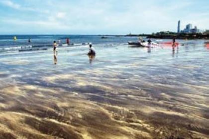 三阳黑沙海边庆典(삼양검은모래해변축제)