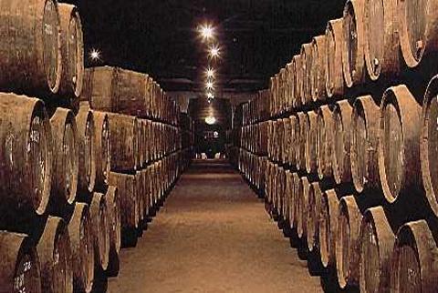 波尔图葡萄酒博物馆