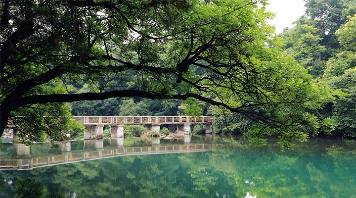 花溪公园旅游图片