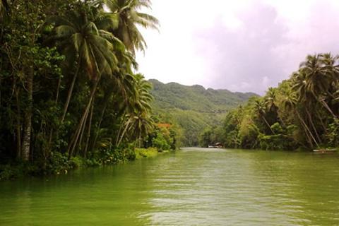 罗博河的图片