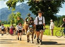 牛下山节 (Almabtrieb / Viehscheid)