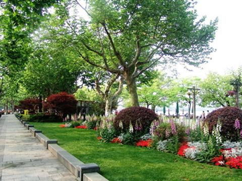 湖滨公园旅游景点图片