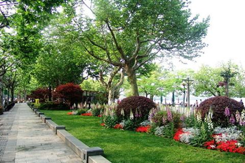 湖滨公园的图片