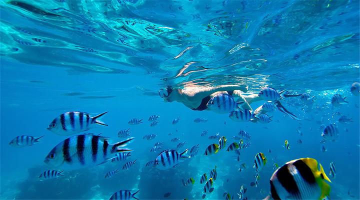 泻湖水族馆旅游图片