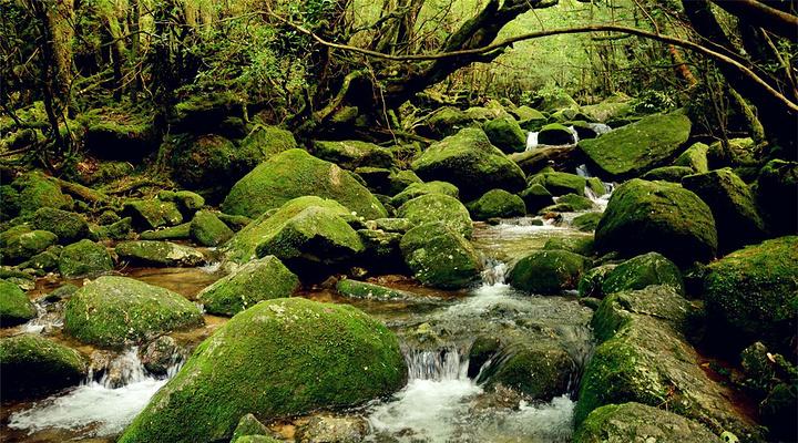 白谷云水峡旅游图片