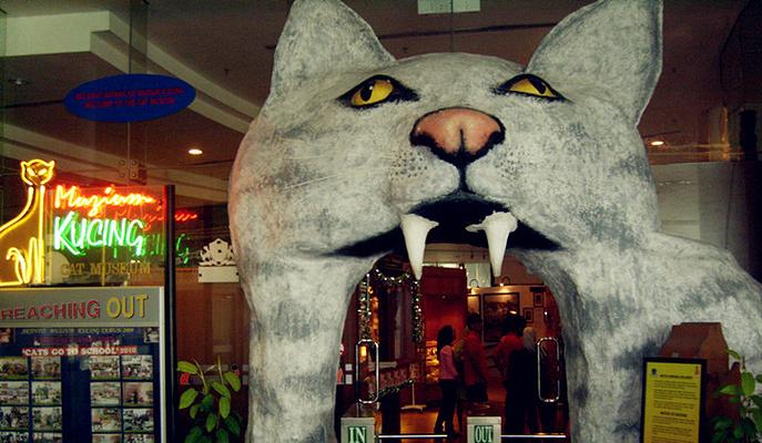 猫博物馆旅游图片