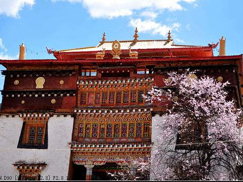 贡嘎郎吉岭寺的图片